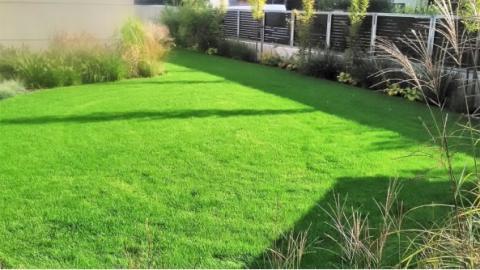 2. Ten samý trávník týden po půlroční údržbě .