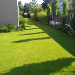 Kunratice, zavlažování a trávník